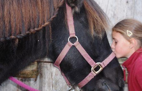 Pferd_Kuss